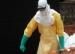Ebola: l'OMS espère une baisse des infections début 2015