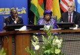 """Les pays frappés par Ebola demandent un """"plan Marshall"""""""