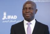 L'ONU plaide pour l'investissement agricole